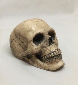 "Image of ""Old Bone"" Hand Painted Mini Skull"