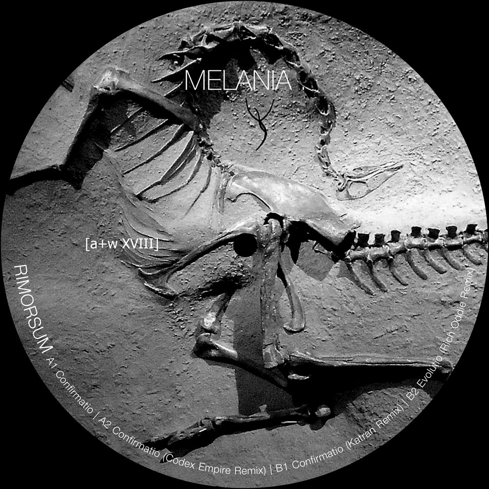 "Image of [a+w XVIII] Melania . - Rimorsum 12"""