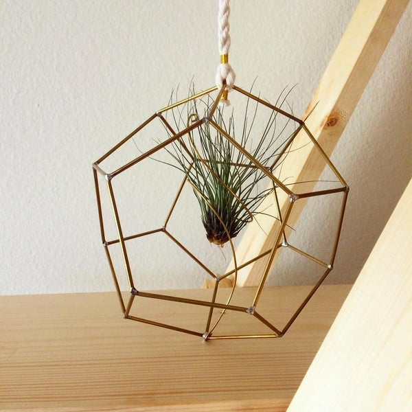 Image of Brass D20 Airplant Hanger