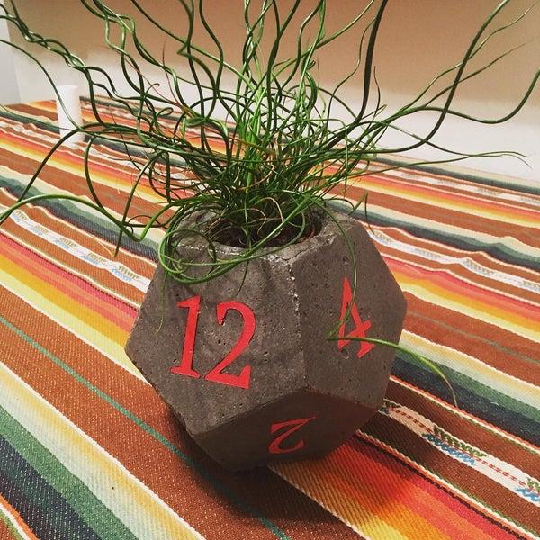 Image of Dice Planter 2