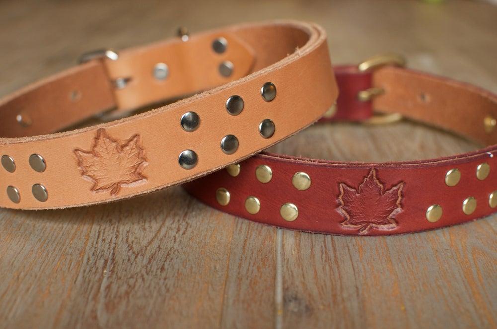 "Image of "" I Am Canadian"" Leather Dog Collar"