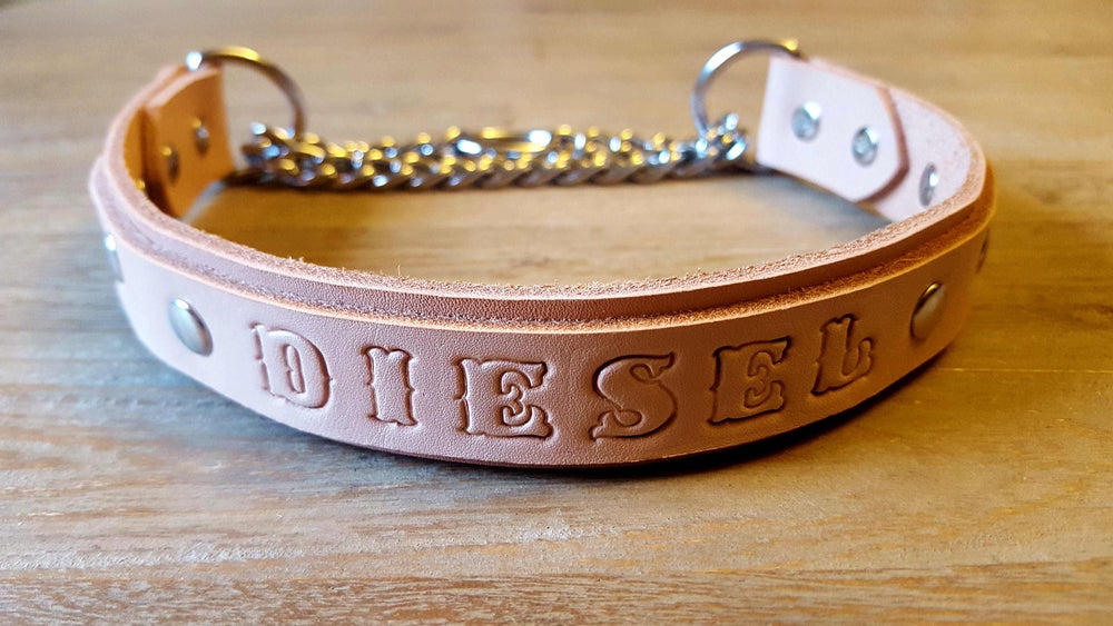 Image of Martingale Chain Leather Dog Collar