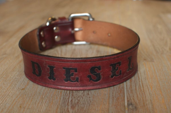 "Image of Diesel Boxer 1 1/4"" Custom Leather Dog Collar"