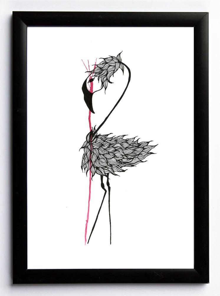 Image of Flamingo