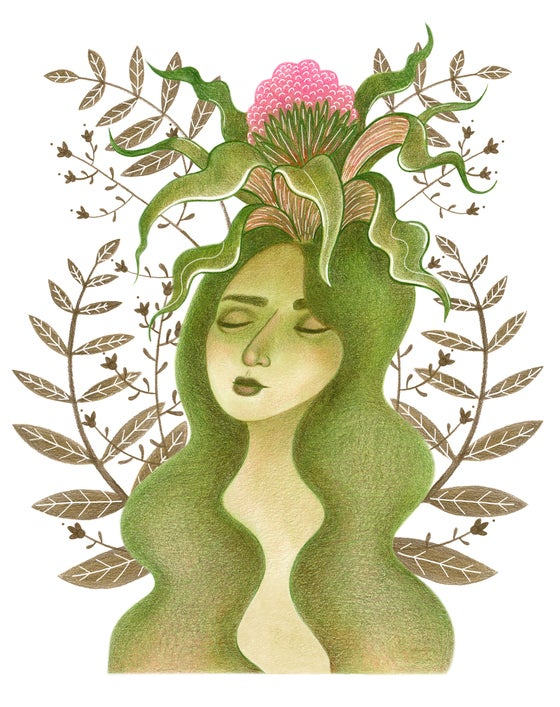 Image of Botanical Medusa
