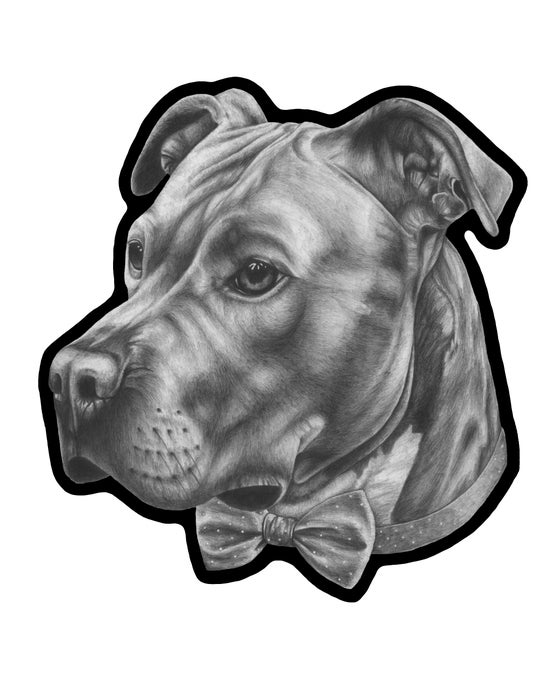 Image of Personal pet portrait
