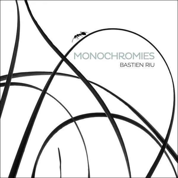 Image of Monochromies