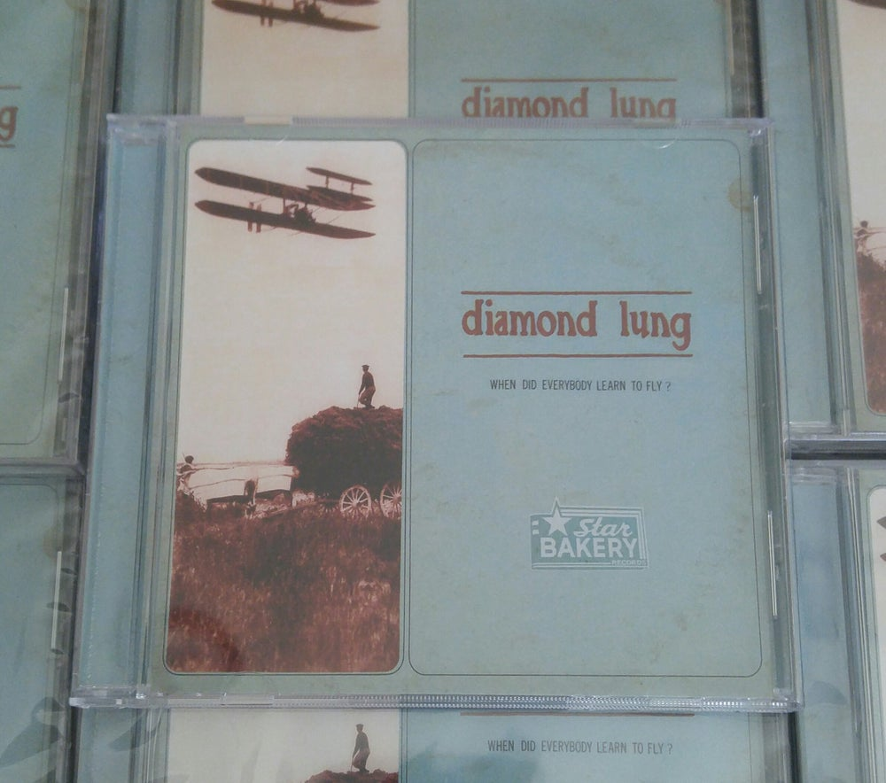 "Image of Diamond Lung ""When Did Everybody Learn To Fly?"""