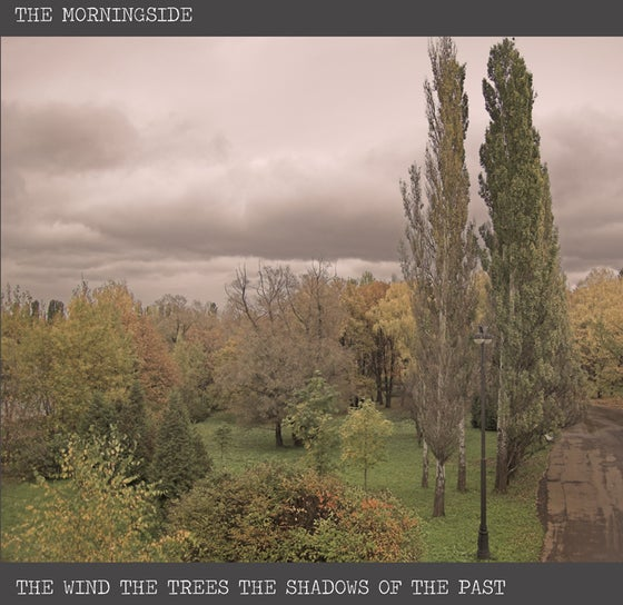 Image of PREORDER:  1xLP The Morningside - The Wind, The Trees, The Shadows of the Past