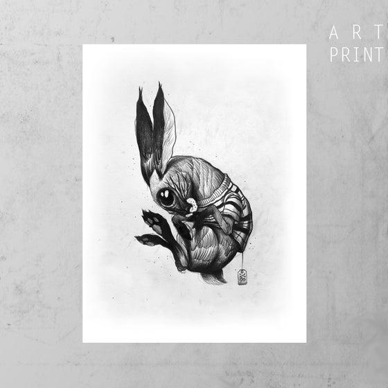 Image of Follow the white rabbit I