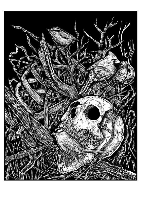 Image of BIRDS & BONES PRINT