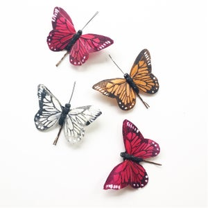 Image of Medium Butterfly Hairclips