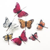 Image of Small Butterfly Hair clips  - 5 colours available