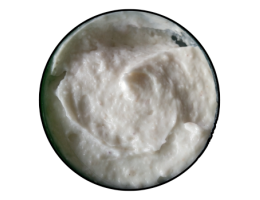 Image of Tidal Wave Blueberry Moisturizer (8oz Jar)