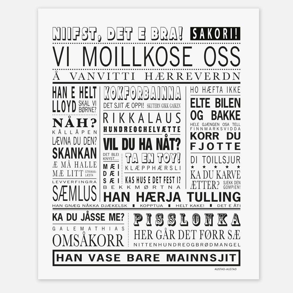"""Image of Finnmark plakat """"Vi moillkose oss"""""""