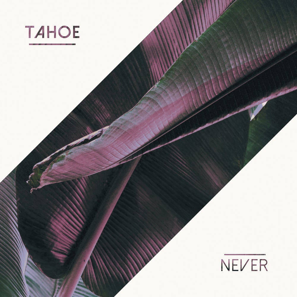 Image of Never EP