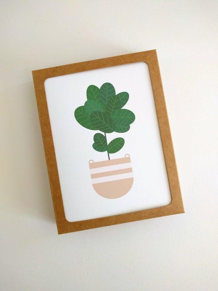 Image of Fiddle Leaf Fig Card Set