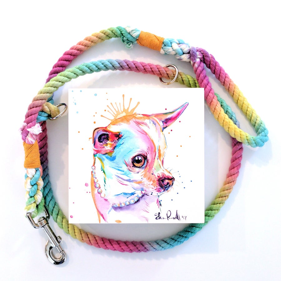 Image of Cradled Pet Portrait and Rainbow Leash PROMO