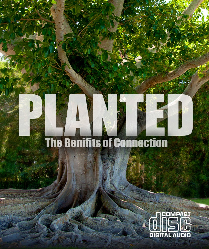 Image of Planted - CD Series