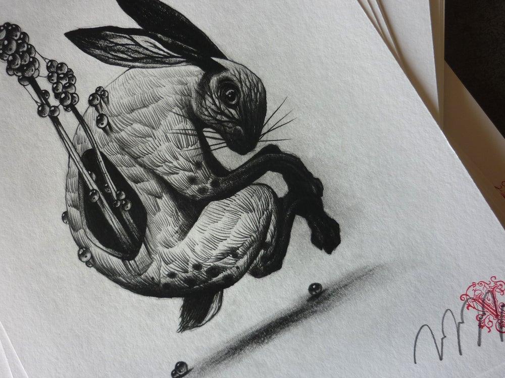 Image of Follow the white rabbit II
