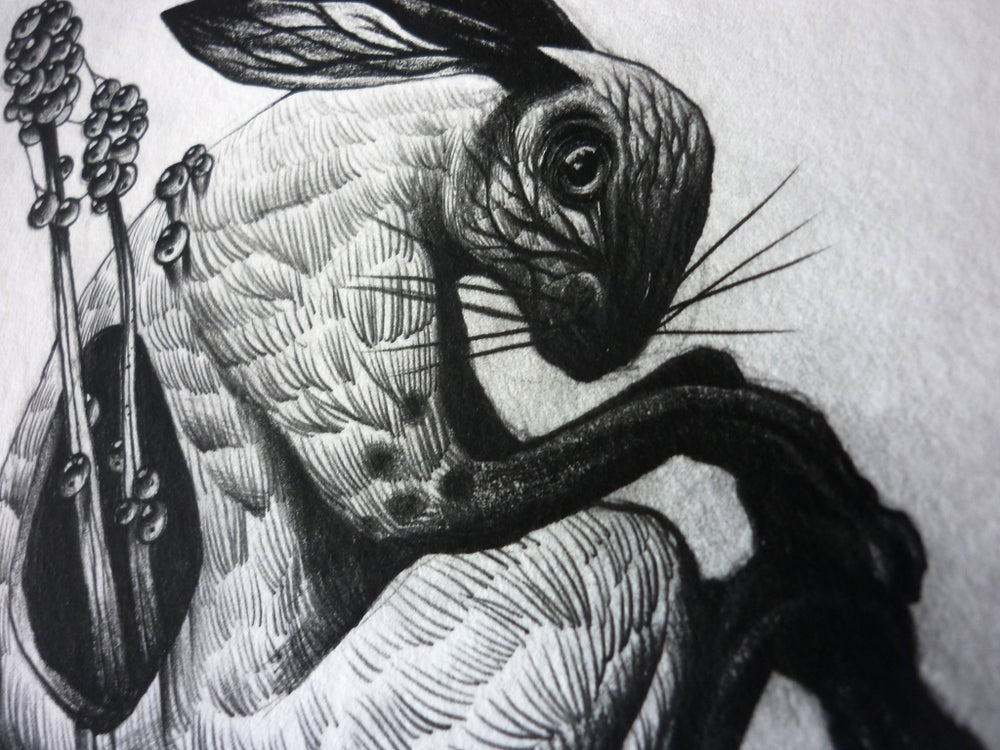 Image of Follow the white rabbit II