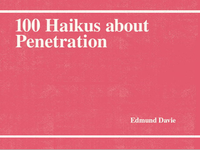 Image of 100 Haikus about Penetration