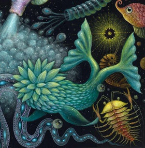 "Image of CEPHALOPODS II ~ 15 x 15"" Signed Open Edition"