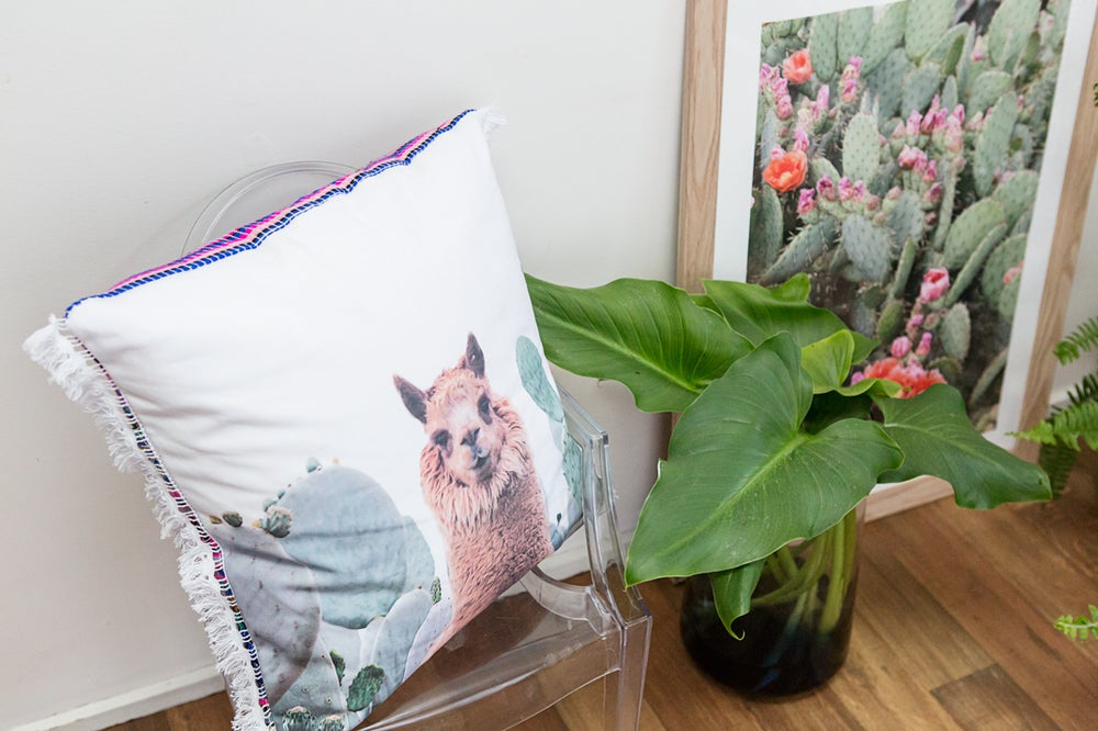 Image of Alpaca Cushion