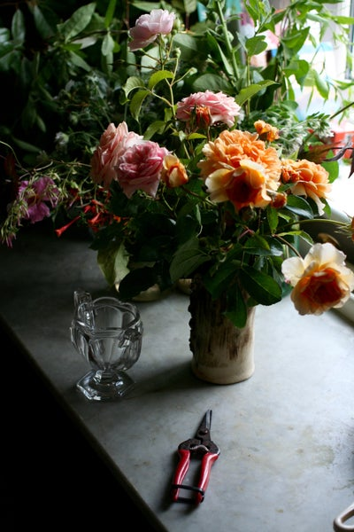 Image of Flowers for the home 17th July 2017