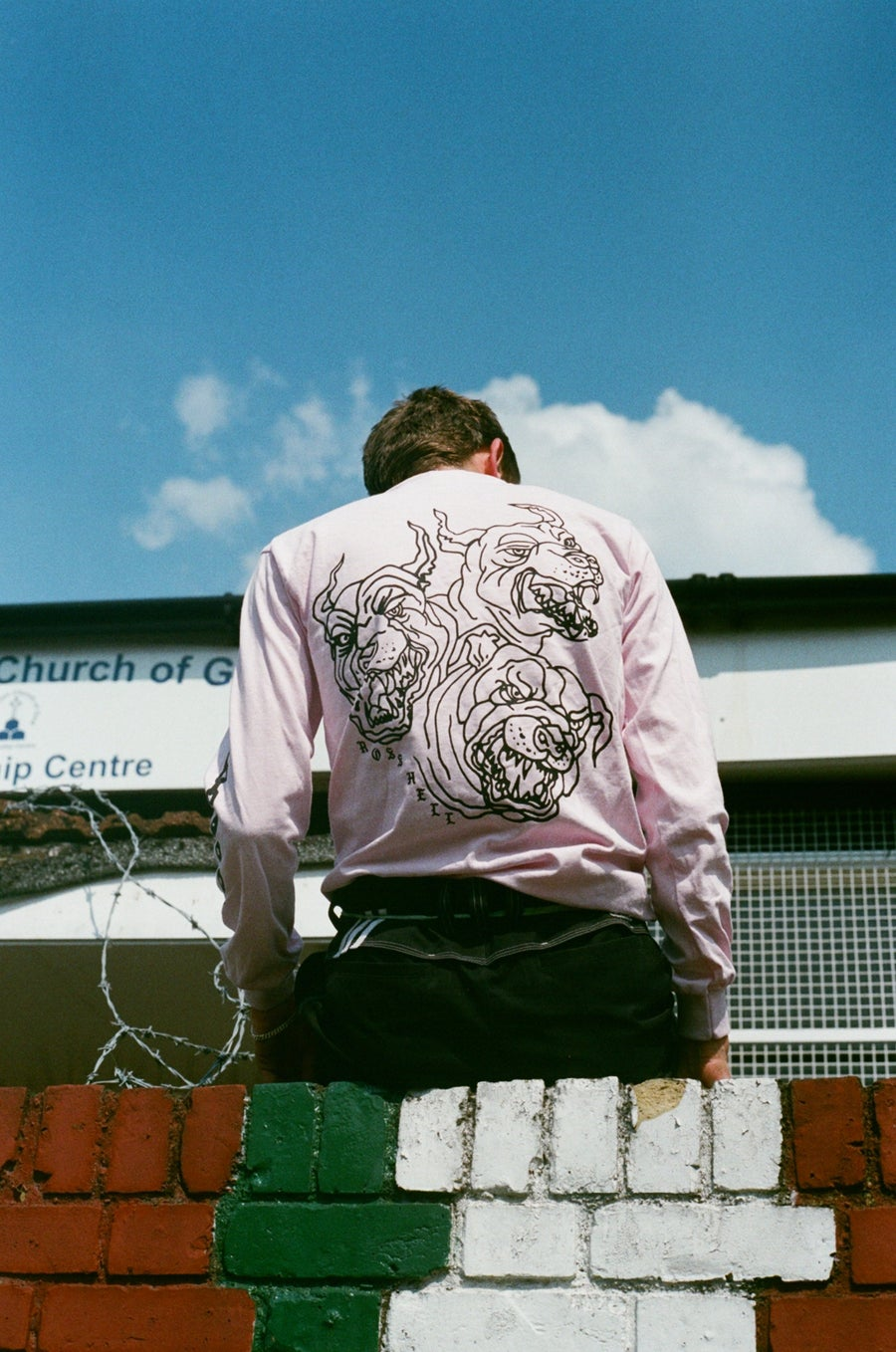 Image of pink DOGS long sleeve