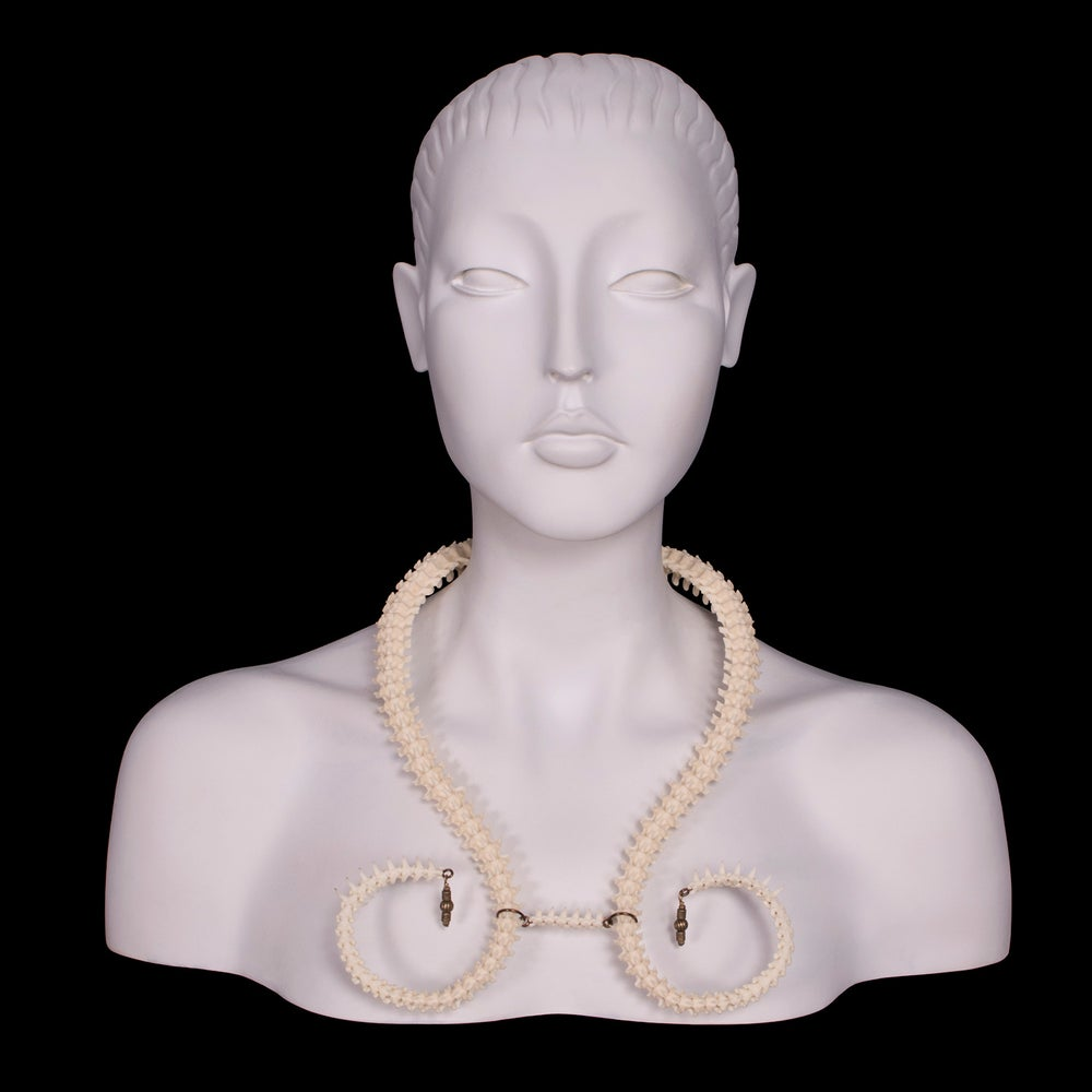 "Image of ""Rizos"" Curved Snake Vertebrae Necklace"