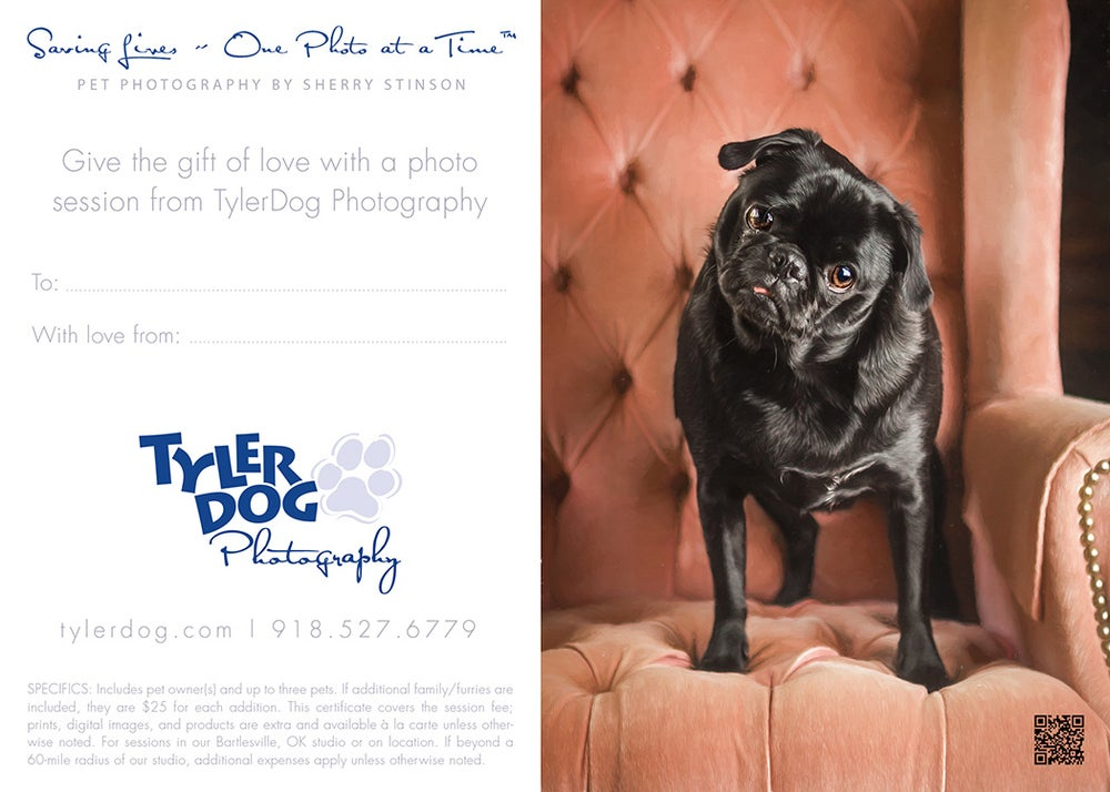 Image of Bare Bones Pet Photography Gift Certificate