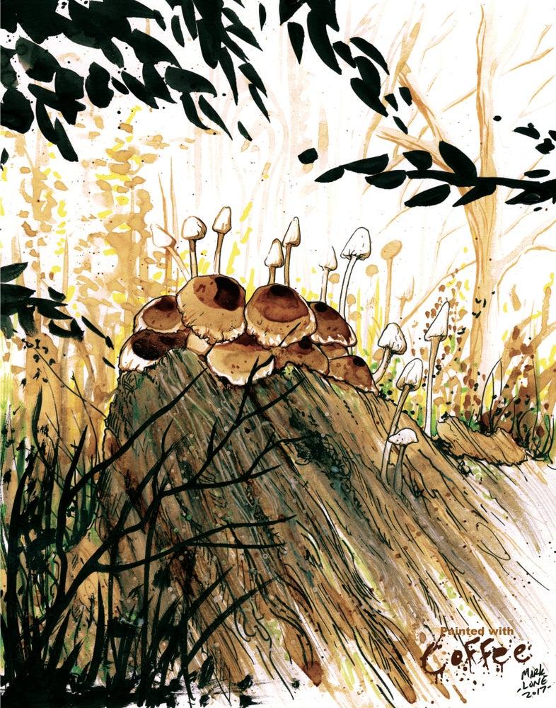 Image of north dakota fungus
