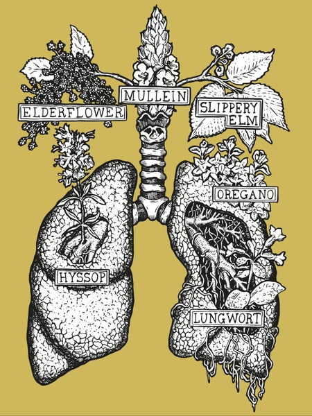 Image of HERBAL LUNGS  [giclée print]