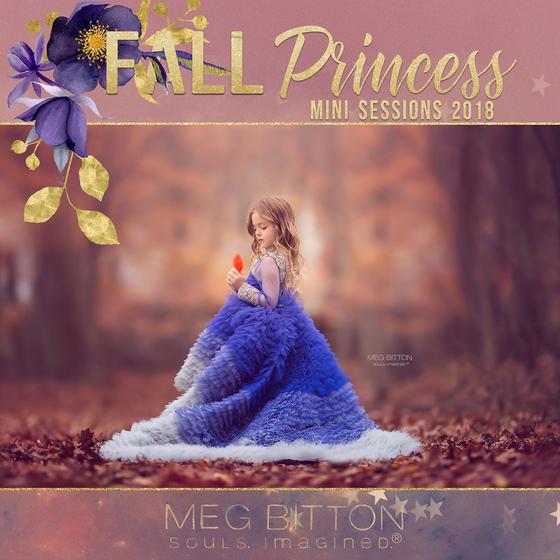 Image of Fall Princess Mini Sessions 2018