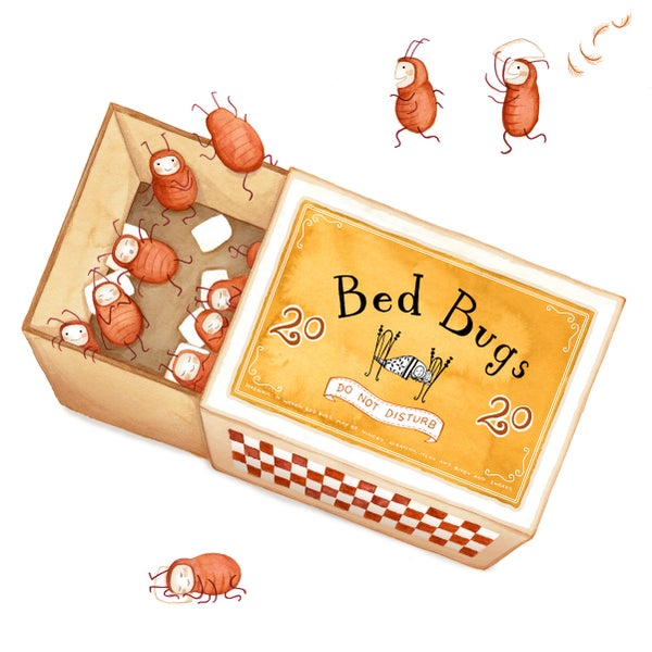 Image of Bedbugs, giclee print