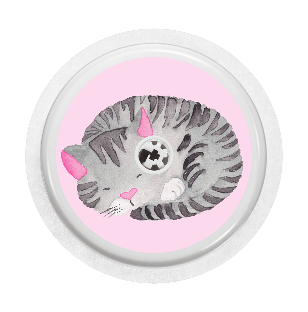 Image of Cat