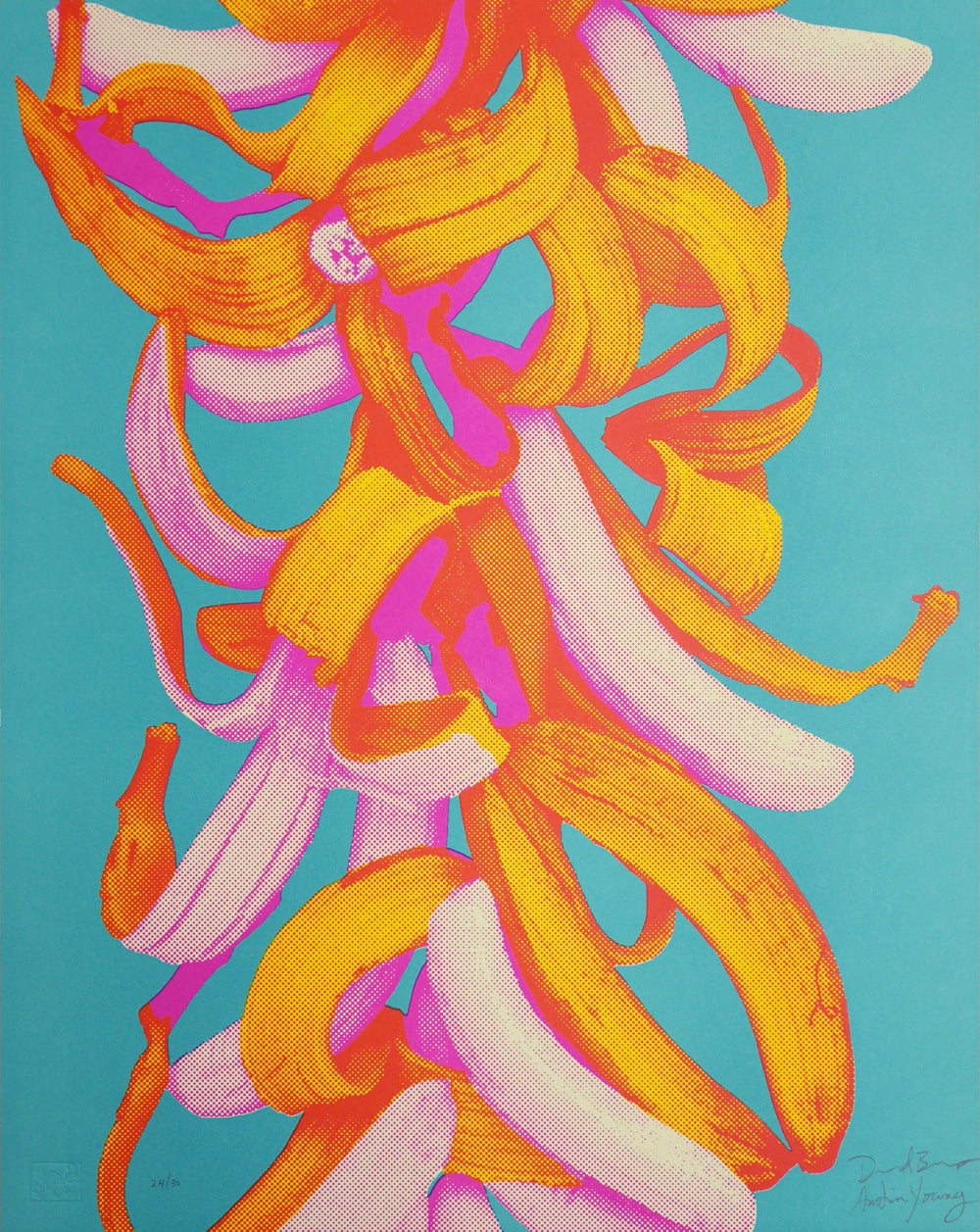 Image of Bananas in 3 Colors