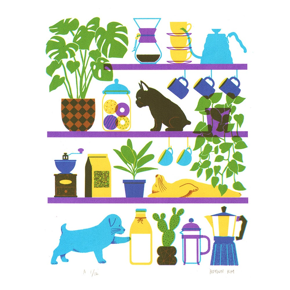 Image of Dogs on Shelves