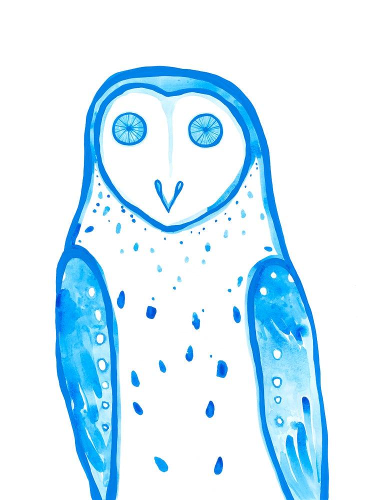 Image of Masked Owl