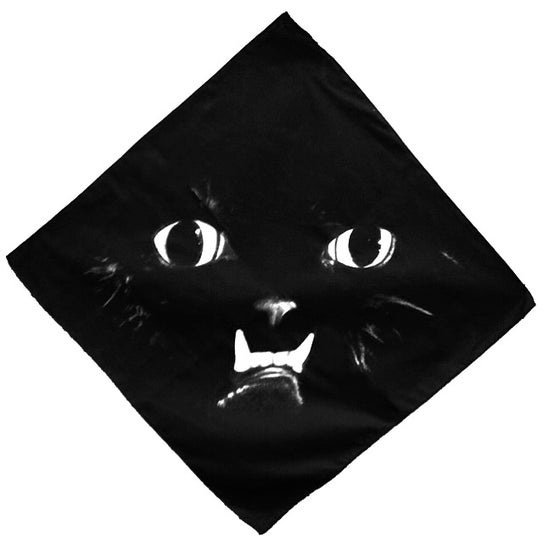Image of PRINCESS MONSTER TRUCK BANDANA - FACE