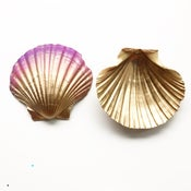 Image of Spirit Shells - Golden Fuchsia