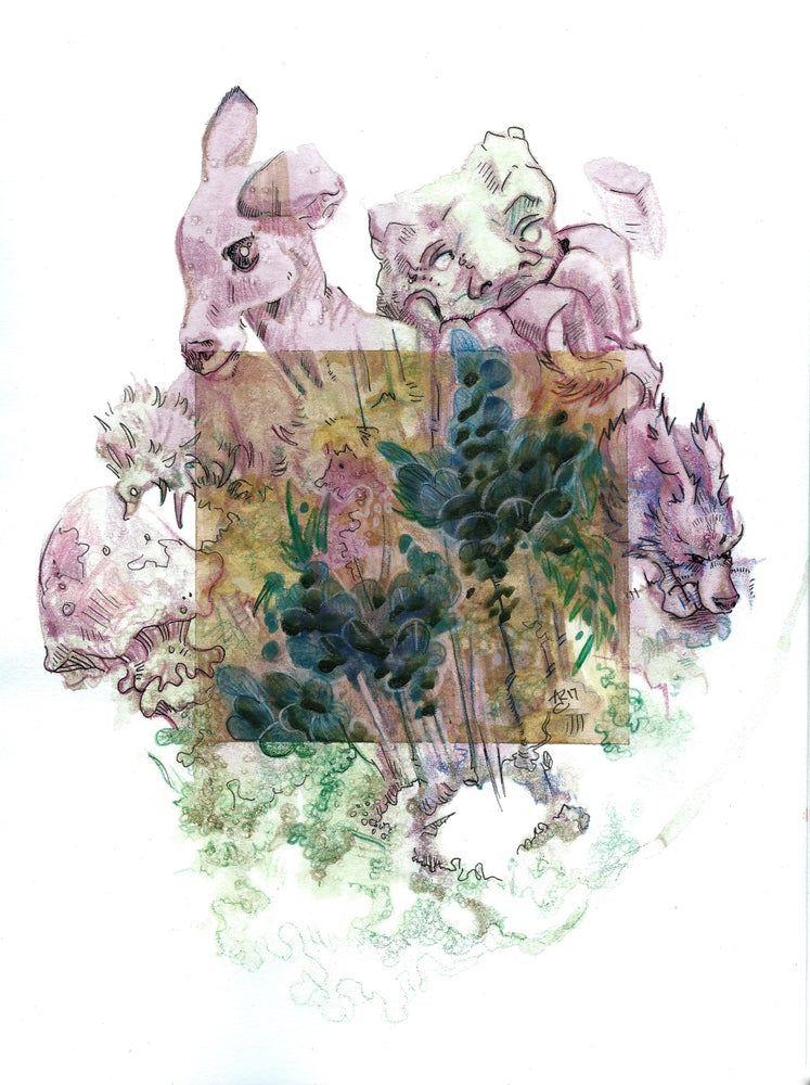Image of Nature Box ::Print::