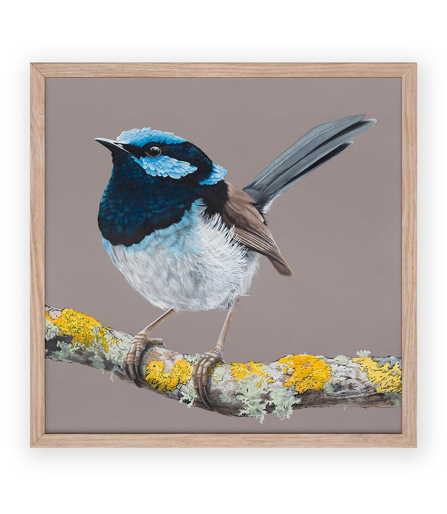Image of Blue Wren Print