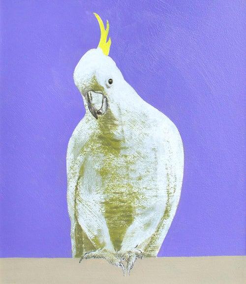 Image of Lilac Cockatoo Print