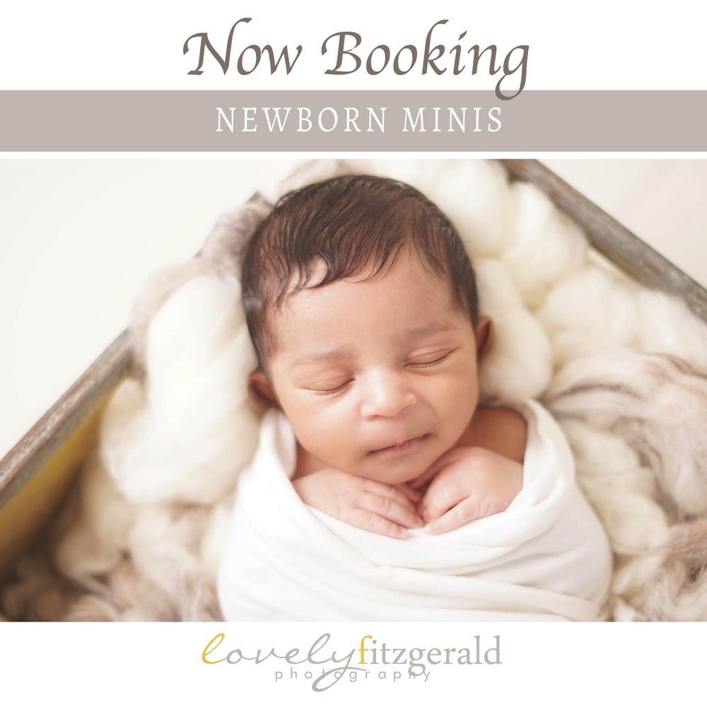 Image of Mini Newborn Portrait