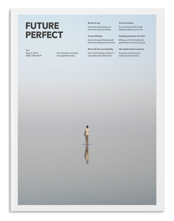 Image of Future Perfect Issue 2