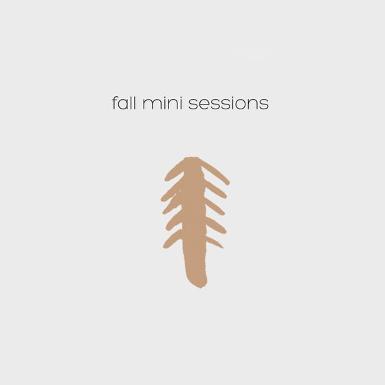 Image of Fall Mini Session // September 23rd