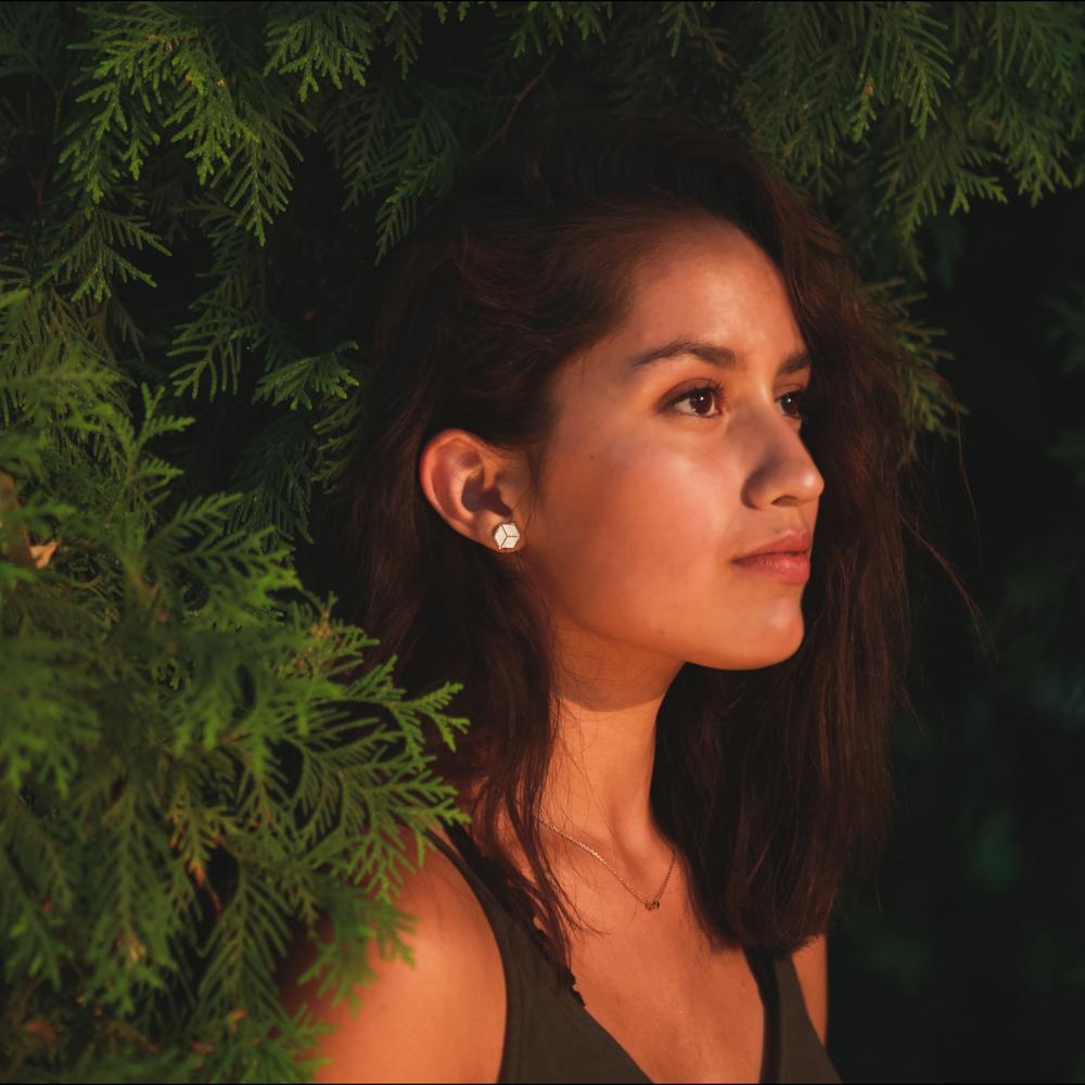Image of Geo Square Earrings