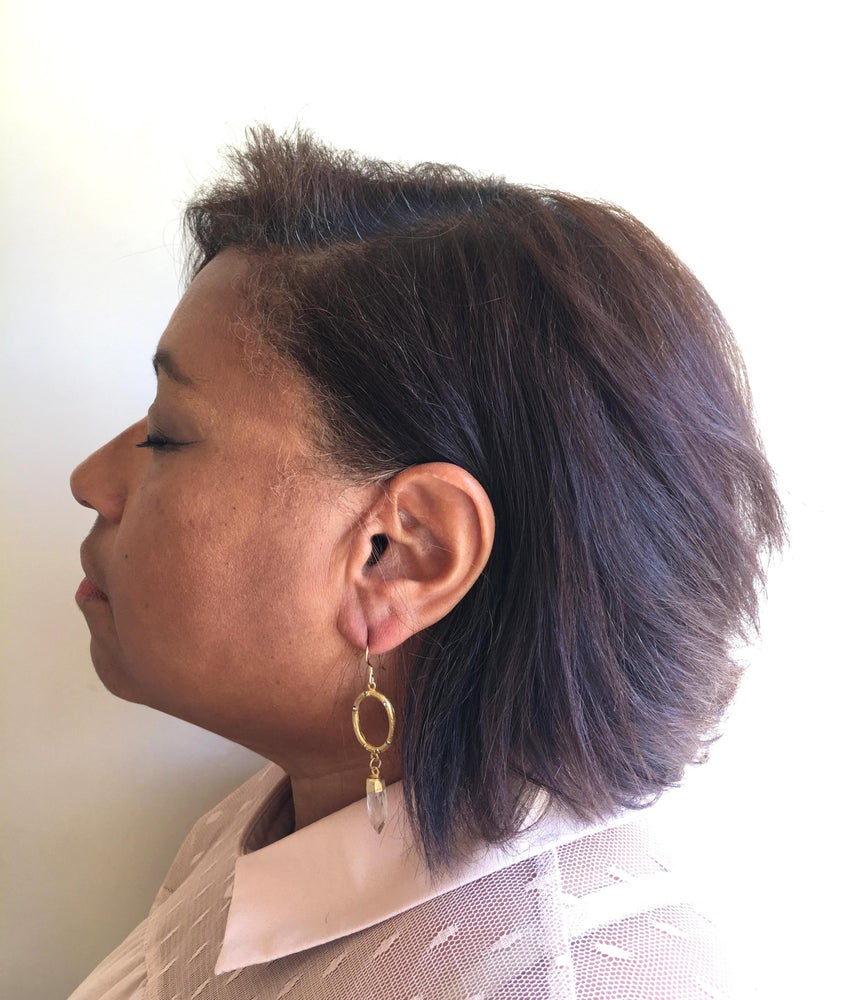 Image of Large Oval Earrings